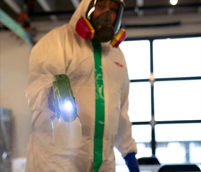 Employee using a Thermal Fogger