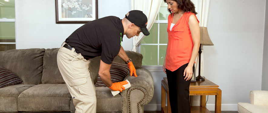 Haverhill, MA carpet upholstery cleaning